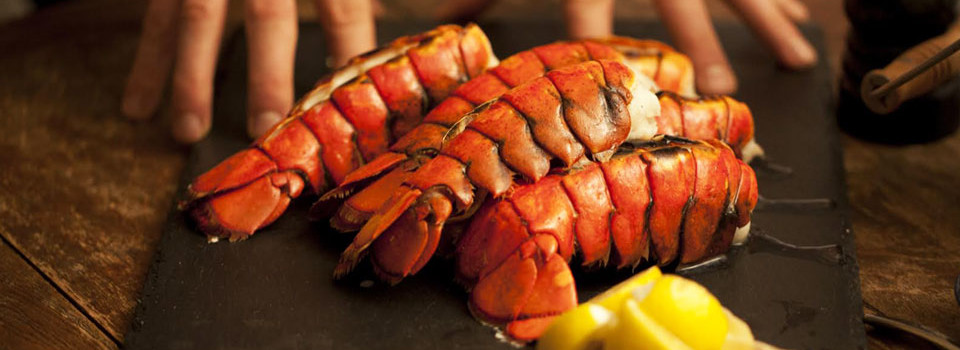 lobster-banner-mark-buys-15